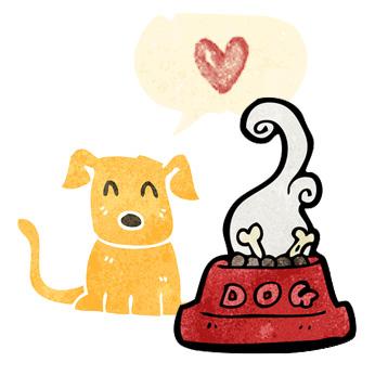 ROZSTRZYGNIĘCIE VI MIĘDZYSZKOLNEGO KONKURSU JĘZYKA ANGIELSKIEGO CARE FOR ANIMALS