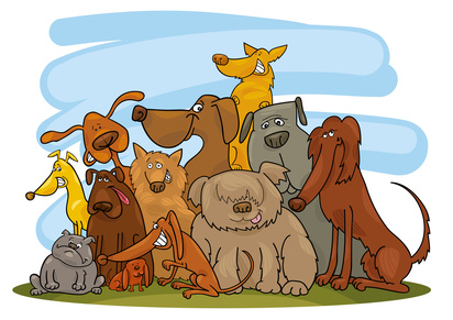 V międzyszkolny konkurs Care for animals